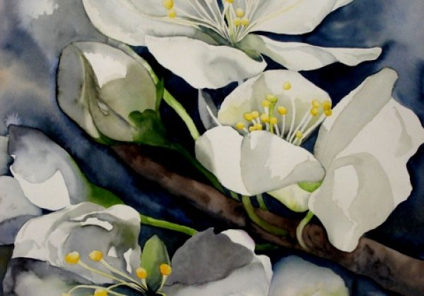 AQUARELLEN ESTHER VOORJAAR 06 00013